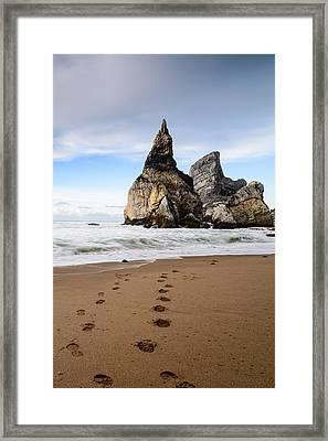 Bear's Beach Iv Framed Print by Marco Oliveira