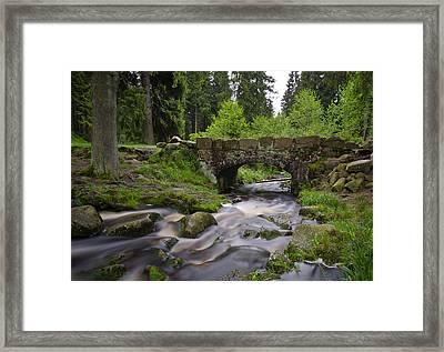 Bears Bridge Framed Print by Steffen Gierok