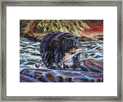 Bears' Catch Of The Day Framed Print