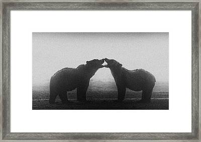 Bears Framed Print by Kencanning