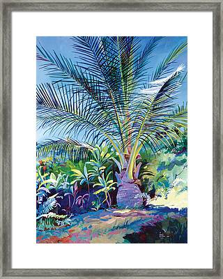 Bears Palm Tree Heulo Maui Hi Framed Print