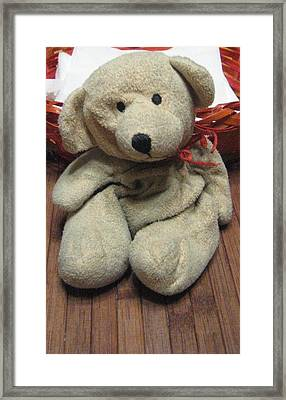 Beary Takes A Break Framed Print