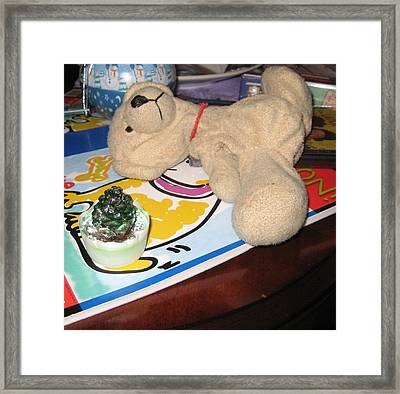 Beary Takes A Nap Framed Print