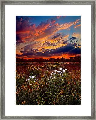 Beating Hearts Framed Print by Phil Koch