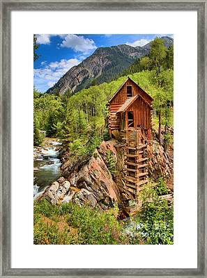 Beating The Odds Framed Print by Adam Jewell