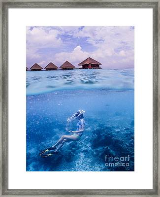 Beautiful Above And Below 2 Framed Print by Hannes Cmarits