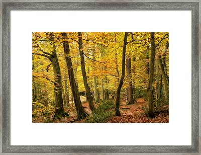 Beautiful Autumn Fall Forest Landscape Digital Painting Framed Print by Matthew Gibson