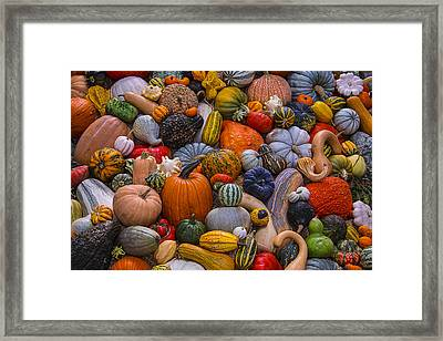 Beautiful Autumn Harvest Framed Print