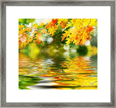 Beautiful Autumn Leaves Framed Print