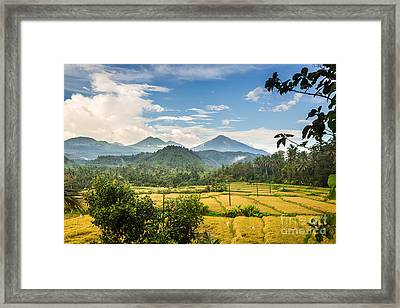 Beautiful Bali Framed Print by Didier Marti