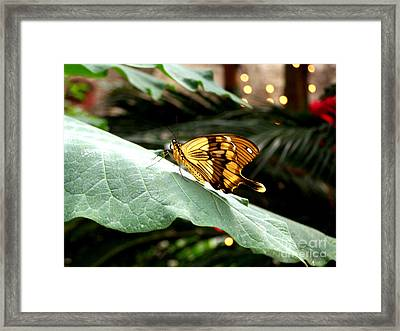 Beautiful Blessings Framed Print by Kathy  White