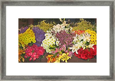 Framed Print featuring the photograph Beautiful Blooms by Judith Morris