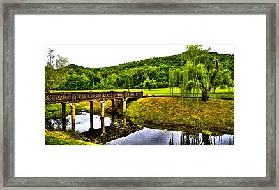 Beautiful Blowing Spring Park Framed Print by David Patterson