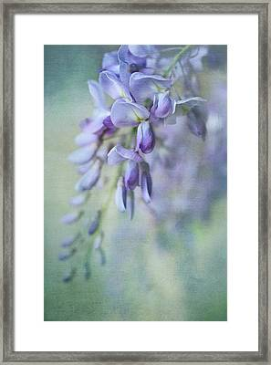 Beautiful Blue Framed Print