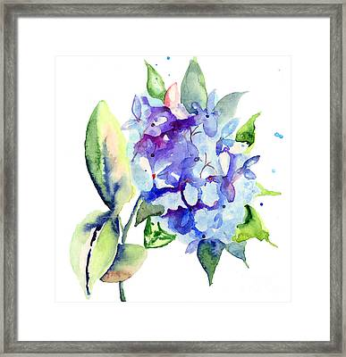 Beautiful Blue Flowers Framed Print