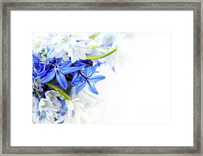 Beautiful Blue White Flower Framed Print by Boon Mee
