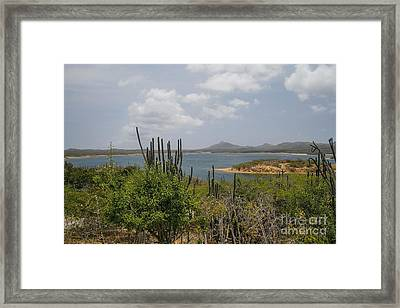 Beautiful Bonaire Framed Print