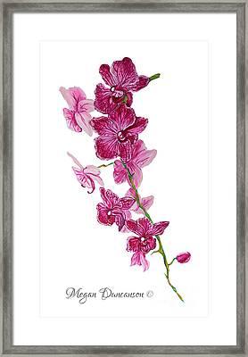 Beautiful Burgundy Orchid Flower Original Floral Painting Pink Orchid I By Megan Duncanson Madart Framed Print by Megan Duncanson
