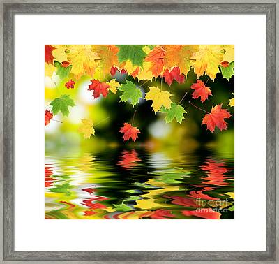 Beautiful Colorful Leaves Framed Print by Boon Mee
