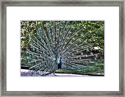 Beautiful Dancer Framed Print by Sonali Gangane
