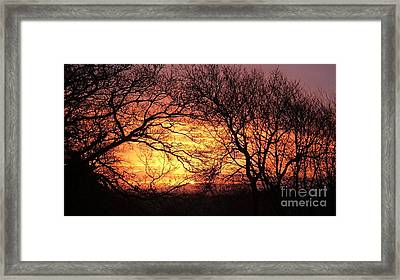 Beautiful Dawn Framed Print