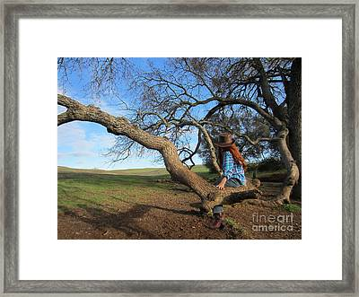 Beautiful Day Framed Print
