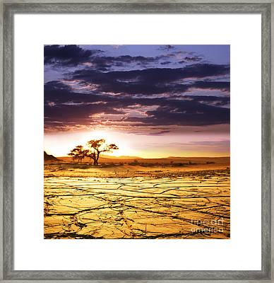 Beautiful Dead Valley Framed Print by Boon Mee