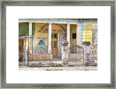 Beautiful Decay - Flower Shop In Merida Mexico Framed Print