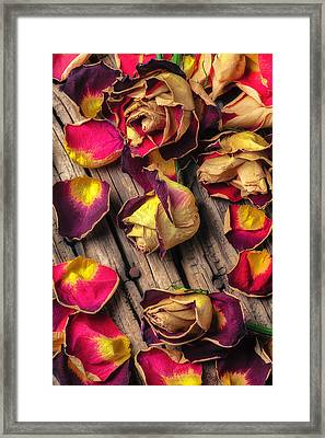 Beautiful Decay Framed Print by Garry Gay