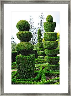 Beautiful Decorative Green Park Framed Print by Boon Mee