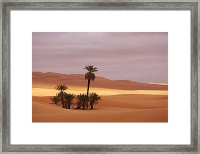 Beautiful Desert Framed Print by Ivan Slosar