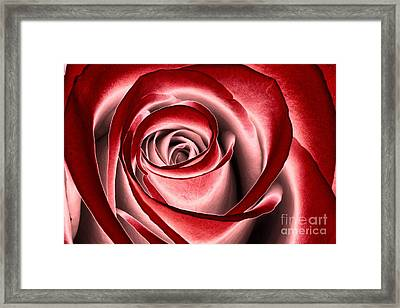 Beautiful Dream Framed Print