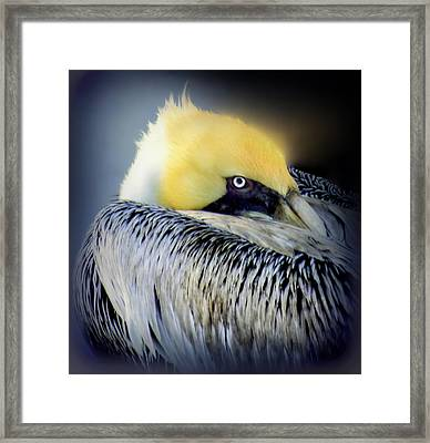 Beautiful Dreamer Framed Print by Karen Wiles