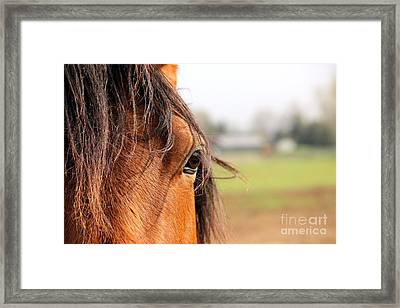 Beautiful Eye Framed Print