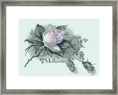 Beautiful Flowers For Mother's Day Framed Print