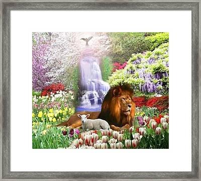 Beautiful Garden Framed Print by Cim Paddock