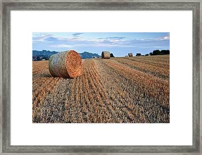 Beautiful Golden Hour Hay Bales Sunset Landscape Framed Print by Matthew Gibson