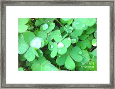 Beautiful Greens Framed Print by Rose Wang