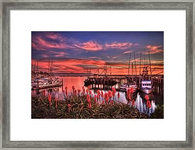Beautiful Harbor Framed Print
