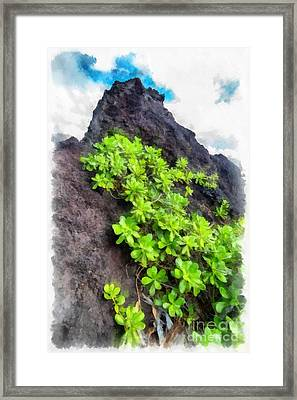 Beautiful Hawaii Framed Print by Edward Fielding