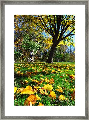 Beautiful Landscape Framed Print by Boon Mee