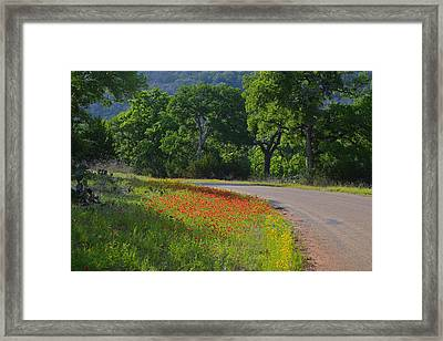 Beautiful Light On The Loop Framed Print by Lynn Bauer