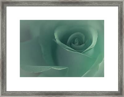 Beautiful Memory Framed Print