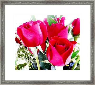 Beautiful Neon Red Roses Framed Print