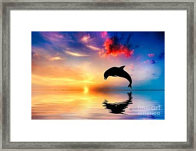 Beautiful Ocean And Sunset With Dolphin Jumping Framed Print