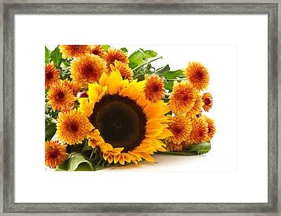 Beautiful Orange Chrysanthemum Framed Print by Boon Mee