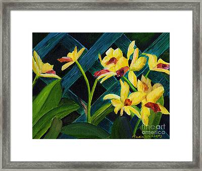 Beautiful Orchids  Framed Print by Maria Williams