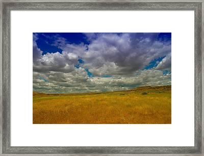 Beautiful Pa Louse Framed Print by Jeff Swan