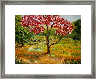 Beautiful Park Framed Print