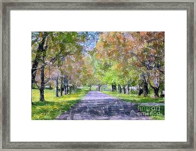 Beautiful Pathway Framed Print by Kathleen Struckle